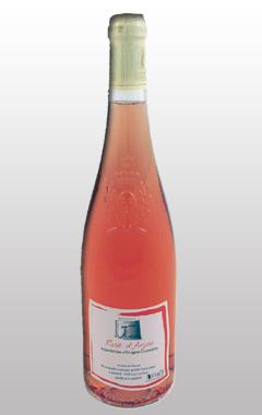 Rose-d-Anjou4
